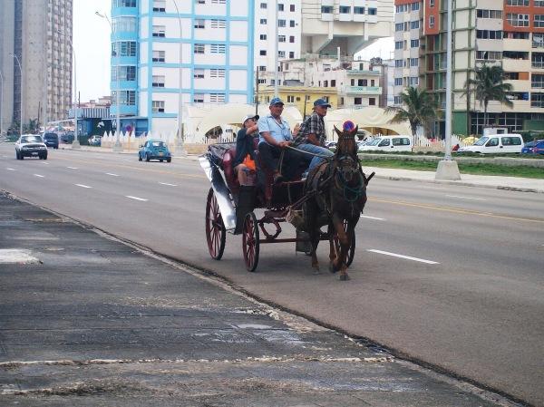 Malecón de La Habana Foto: CubaxDentro