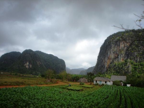 Vega de Tabaco. Valle de Viñales. Foto: CubaxDentro