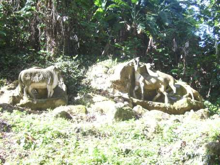 Zoológico de Piedra en Guantánamo