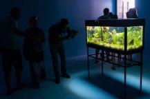 Exposición Efecto pescera por la española Patricia Zalama